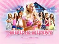 house bunny / Anna Faris