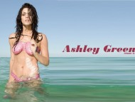 Ashley Greene / High quality Celebrities Female