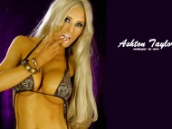 Download Ashton Taylor / Celebrities Female