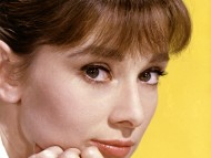Download Audrey Hepburn / Celebrities Female