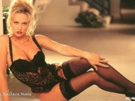 Download Barbara Moore / Celebrities Female