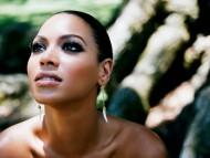 Beyonce Knowles / Celebrities Female