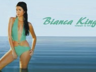 High quality Bianca King  / Celebrities Female
