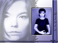 Bjork / Celebrities Female