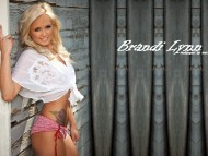 Download Brandi Lynn / Celebrities Female