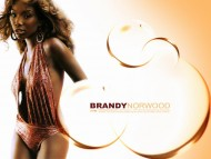 Brandy Norwood / Celebrities Female