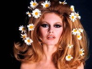 Download Brigitte Bardot / Celebrities Female