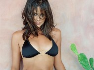 Brooke Burke / High quality Celebrities Female