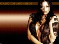 Candice Michelle / High quality Celebrities Female