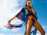 Candice Swanepoel / Celebrities Female