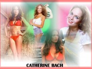 Catherine Bach / Celebrities Female