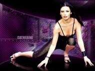 Download Catherine Zeta Jones / Celebrities Female