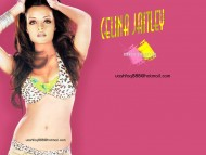 Celina Jaitley / Celebrities Female
