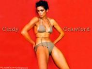 Cindy Crawford / Celebrities Female