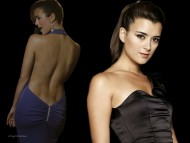 NCIS, Ziva David, Blue Dress, Bare Back / Cote de Pablo