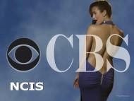 cbs, ncis / Cote de Pablo