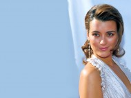 Cote de Pablo / Celebrities Female