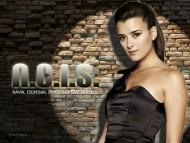 Download ncis, ziva david, ziva / Cote de Pablo
