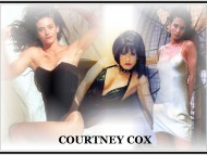 Courteney Cox / Celebrities Female