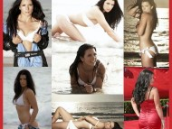 Danica Patrick / Celebrities Female