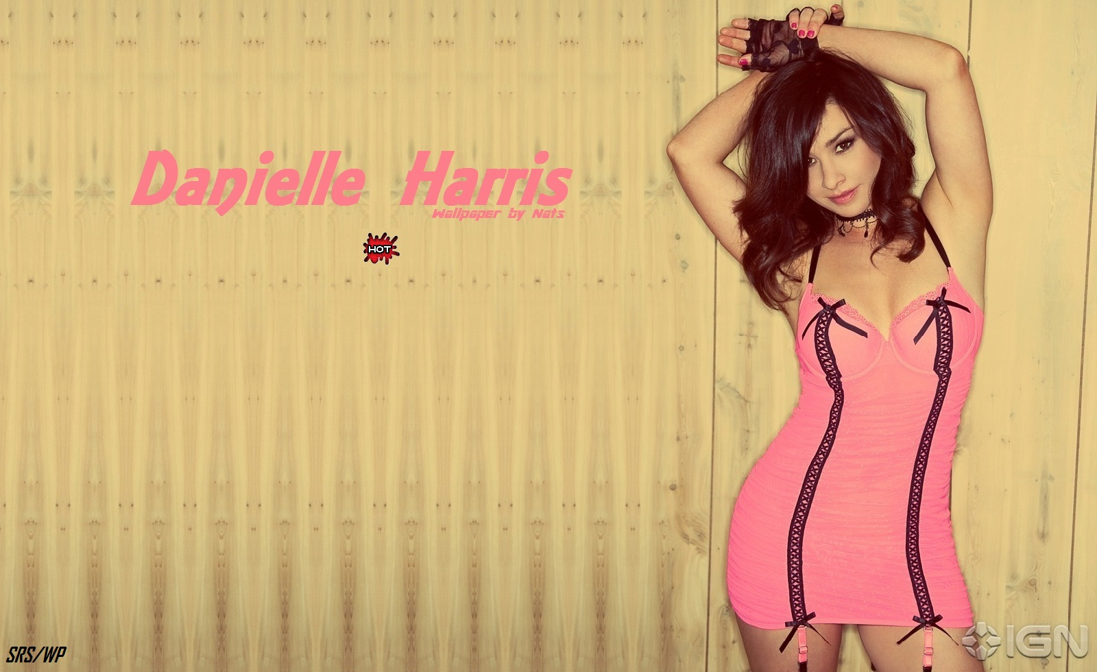 Download Hq Danielle Harris Wallpaper Celebrities Female