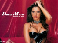 Dawn Marie / Celebrities Female