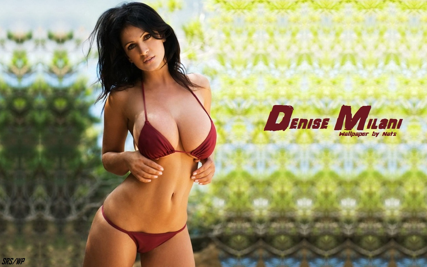 denise milani model Actress