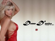 Donna Derrico / Celebrities Female