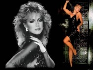 Donna Mills / Celebrities Female
