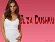 Eliza Dushku / Celebrities Female