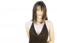 Elizabeth Hurley / High quality Celebrities Female