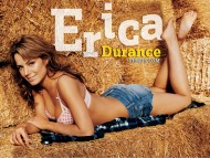 the hay / Erica Durance