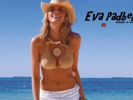 Download High quality Eva Padberg  / Celebrities Female