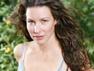 Evangeline Lilly / Celebrities Female