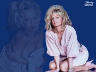 Download Farrah Fawcett / Celebrities Female