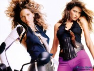 Frankie Rayder / Celebrities Female