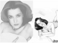 Download Gillian Anderson / Celebrities Female