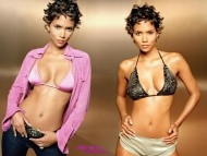 Halle Berry / Celebrities Female