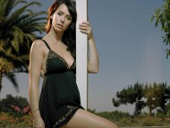 High quality Jennifer Love Hewitt  / Celebrities Female