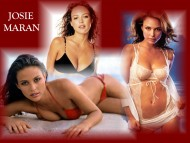 Download Josie Maran / Celebrities Female