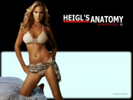 Anatomy, doctor, sexy / Katherine Heigl