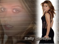 Kelly Clarkson / Celebrities Female