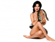 Laura Harring / Celebrities Female