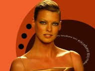 Linda Evangelista / Celebrities Female