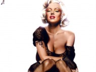 High quality Marilyn Monroe  / Celebrities Female