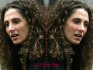Download C.S.I.  N.Y. / Melina Kanakaredes