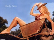 Molly Sims / Celebrities Female