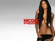 High quality Nicole Scherzinger  / Celebrities Female