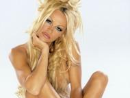 Pamela Anderson / Celebrities Female