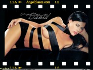 Pamela David / Celebrities Female